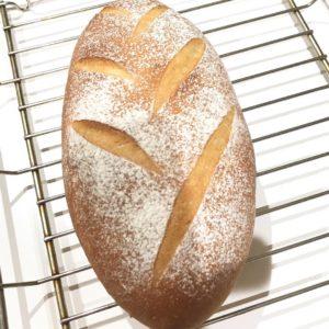 白神こだまのパン教室